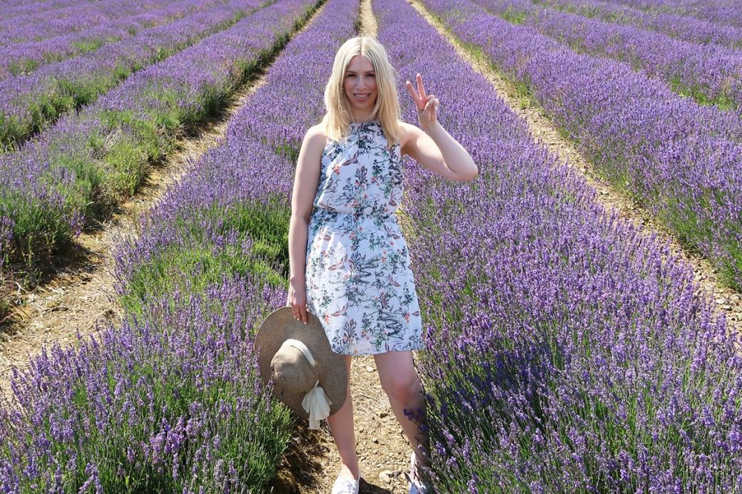 Suns out at Lordington Lavender