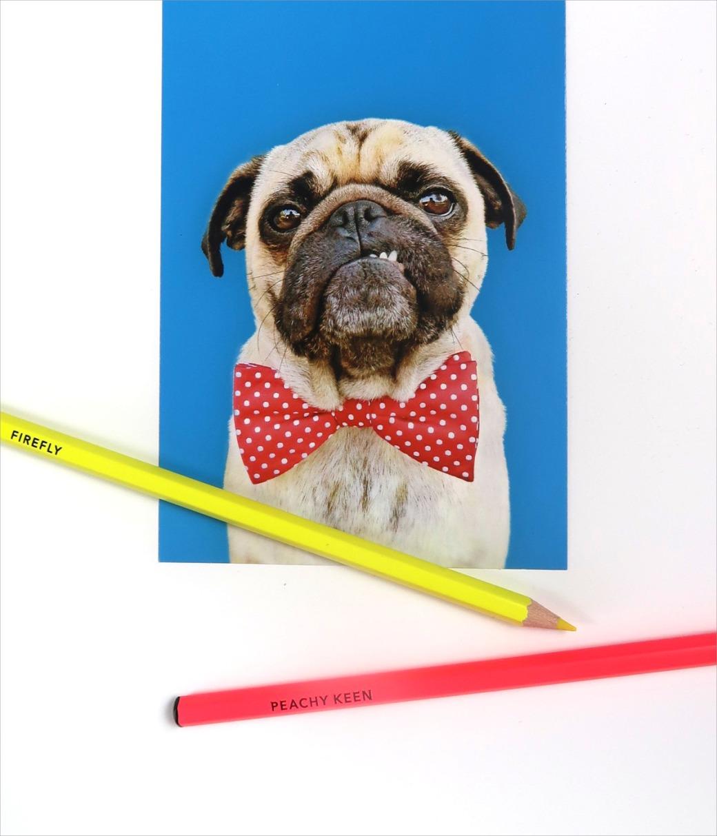 postcard and pencils
